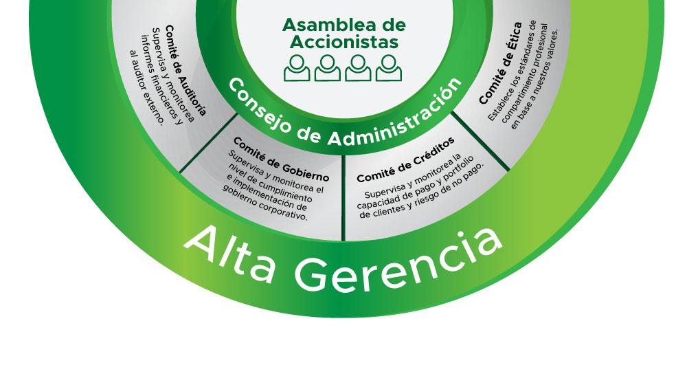 Organismos del Gobierno Corporativo