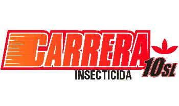 Carrera 10 SL