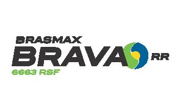 Semillas Brasmax BMX Brava RR (6663 RSF)