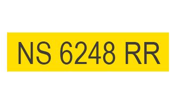Semillas Nidera NS 6248 RR